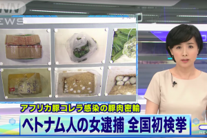Hình phạt nào dành cho nữ sinh Việt bị bắt vì mang trứng vịt lộn và nem chua vào Nhật Bản